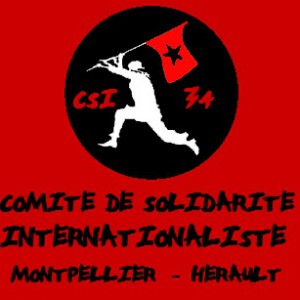 CSI-34 Logo